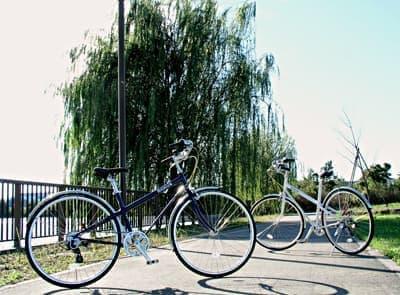 「ちょっと昔の」サイクリングをイメージしたモデル「パリ・ブレスト クラッシック」  タイヤは「Michelin Dynamic Sport Black」