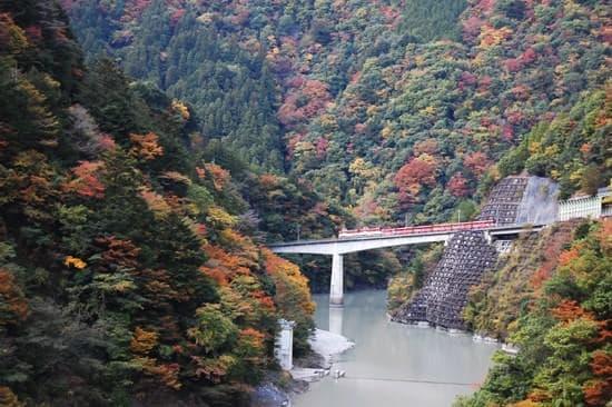 アプト式区間アプトいちしろ駅~長島ダム駅(出典:大井川鐵道)