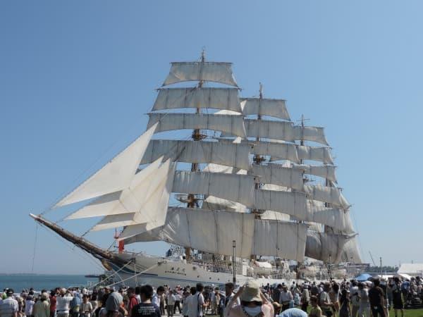 帆を広げた海王丸が見られる(出典:航海訓練所)