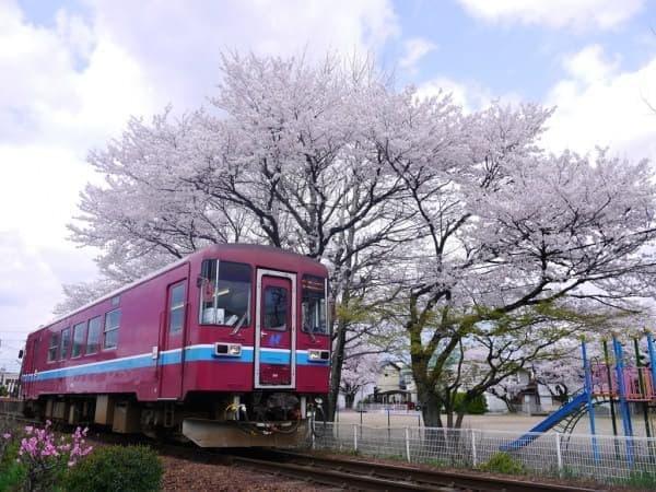 長良川鉄道の知られざる?一面でした