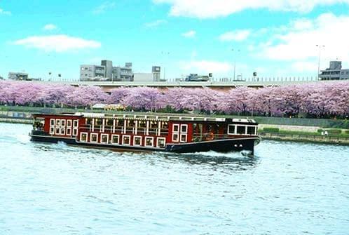 おいしい料理を食べたあとは、船の上からお花見はいかが?