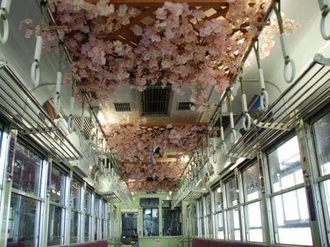 列車の中から春を感じてほしいとのこと(出典:京福電気鉄道)