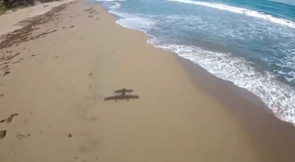 GoPro を取り付けて撮影した例