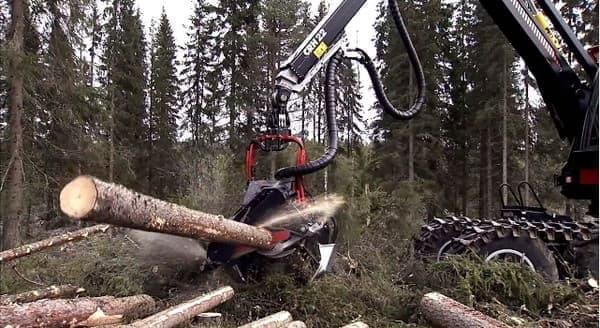 さらに枝を刈り落とし、適当な長さの丸太に切り揃えるところまで1台でやってしまう