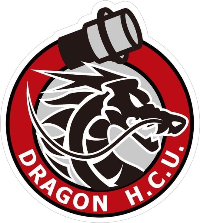 これがドラゴンハイパー・コマンドユニットのシンボルマークだ(画像提供:総務省消防庁)
