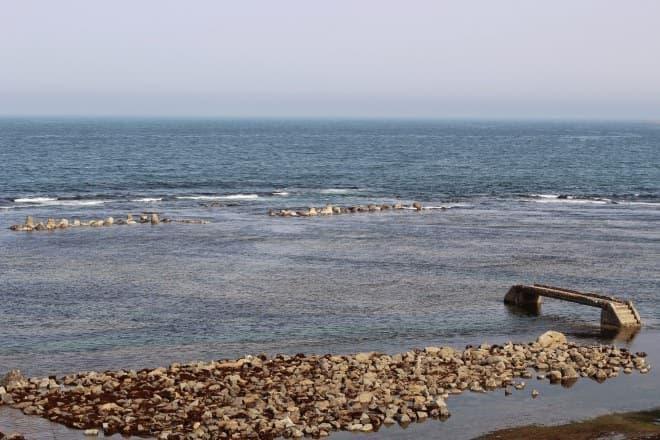 沿岸の岩盤に15kmの溝を刻んだ「ウニ牧場」で大きくする(写真提供:JR東日本)