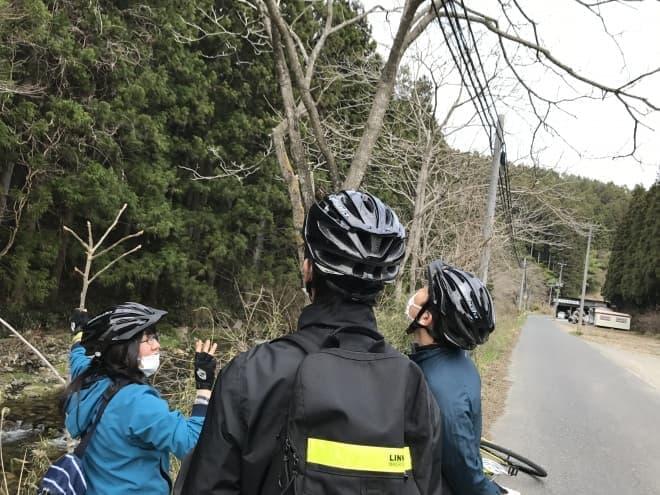 南三陸 里山×里海サイクリング みなチャリ!