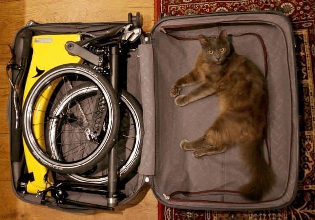ネコ2匹分の自転車「HUMMINGBIRD(ハチドリ)」に、電動アシスト版の「Electric」