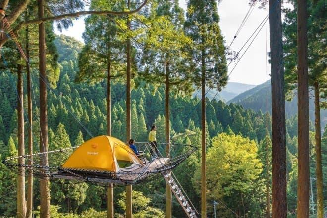 冒険の森「Tree Picnic Adventure IKEDA」で「樹上のテントサイト」サービス開始