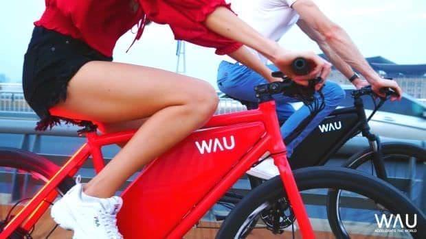 シートステーを、ウィンカーに ― 全部入り自転車「WAU」