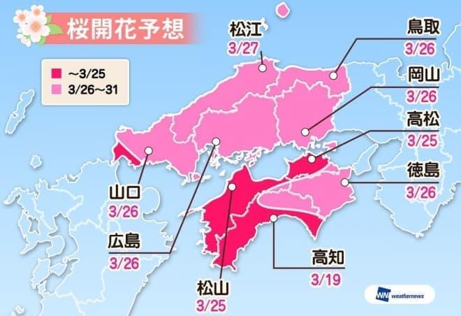 ウェザーニューズが「第一回桜開花予想」を発表