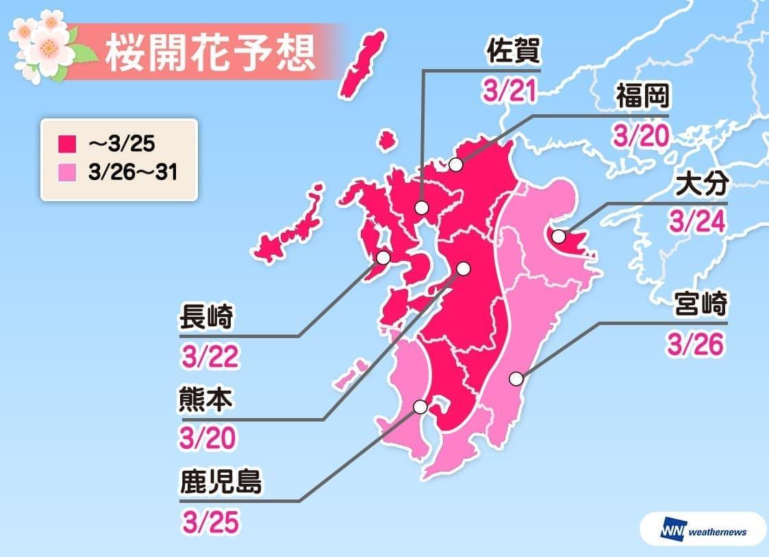 九州の桜開花予想