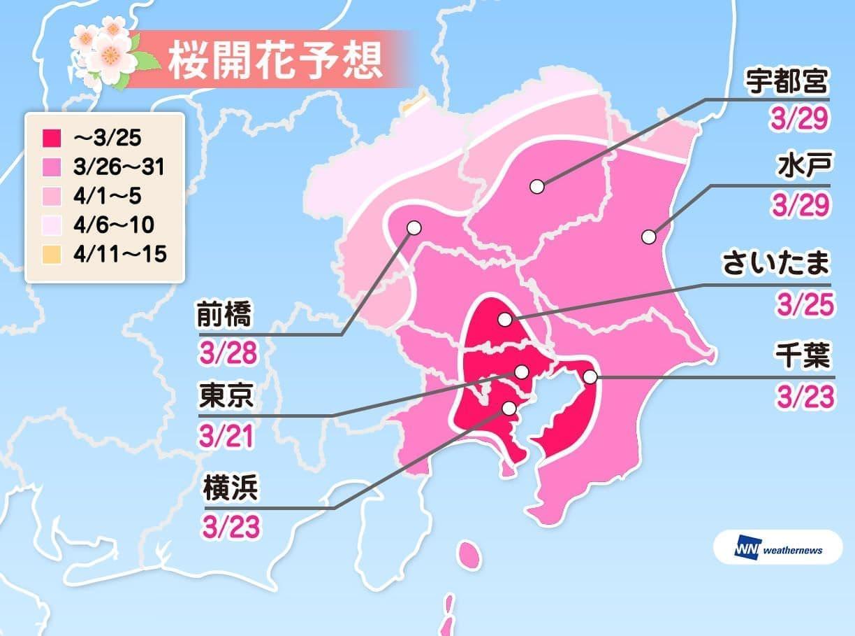 関東の桜開花予想