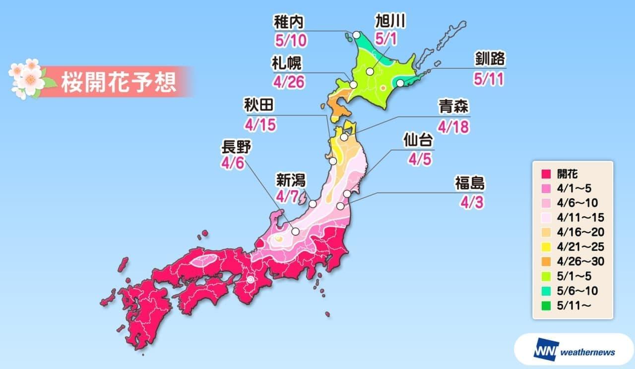 週末は絶好の花見日和に― ウェザーニューズが「第八回桜開花予想」を発表