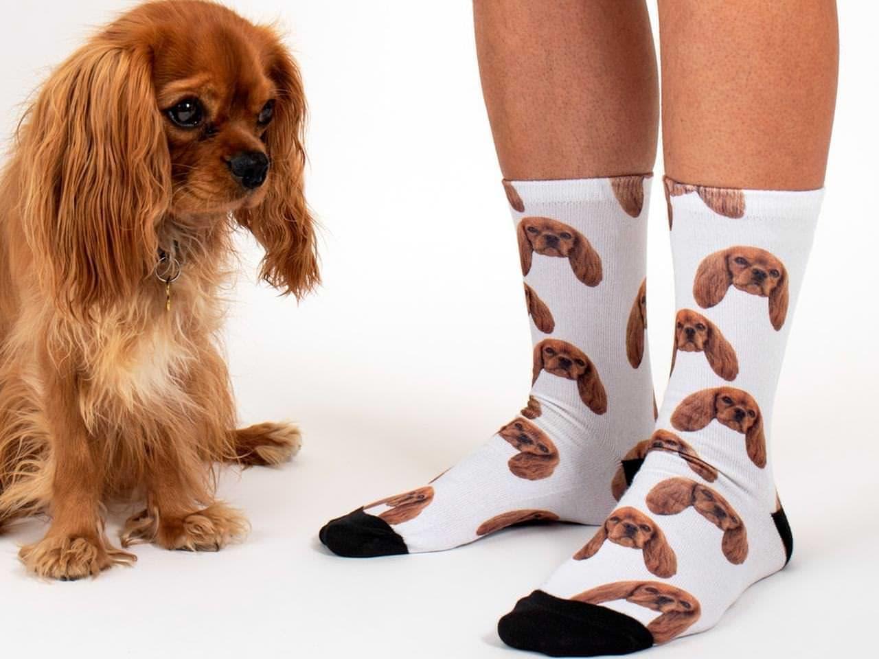 ペットの写真で作るソックス「Sock Your Pet」や、
