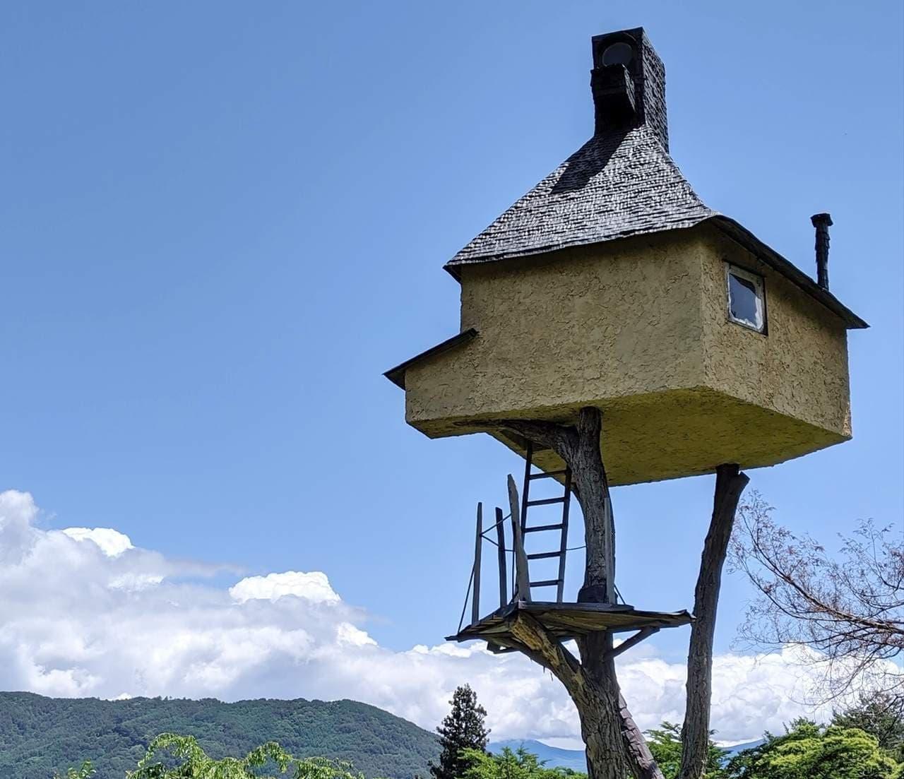 「高過庵」―世界一危険な茶室の内部見学が可能に!