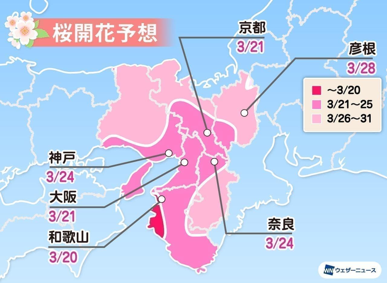 ウェザーニューズが「第五回桜開花予想」発表
