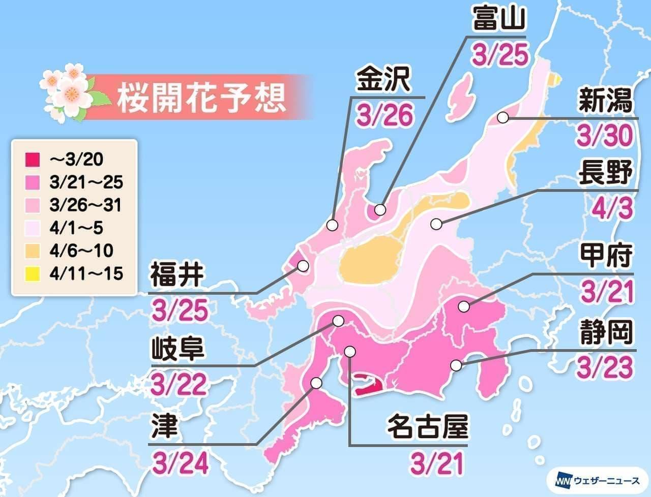 ウェザーニューズが「第六回桜開花予想」発表