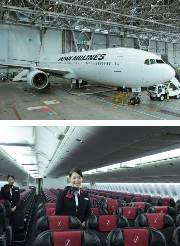 利用できるのは新機材 JAL SKY NEXT