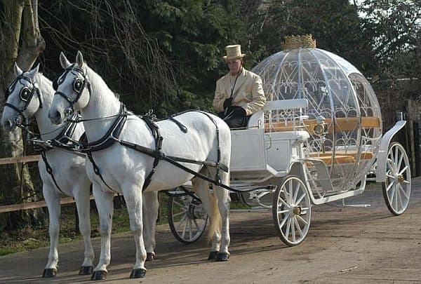 かぼちゃの馬車リアルバージョン  カゴ部分は本当はかぼちゃ  馬車を引いているのはハツカネズミです
