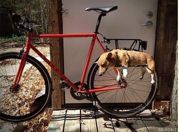 Fairdale Bikes による犬用キャリア