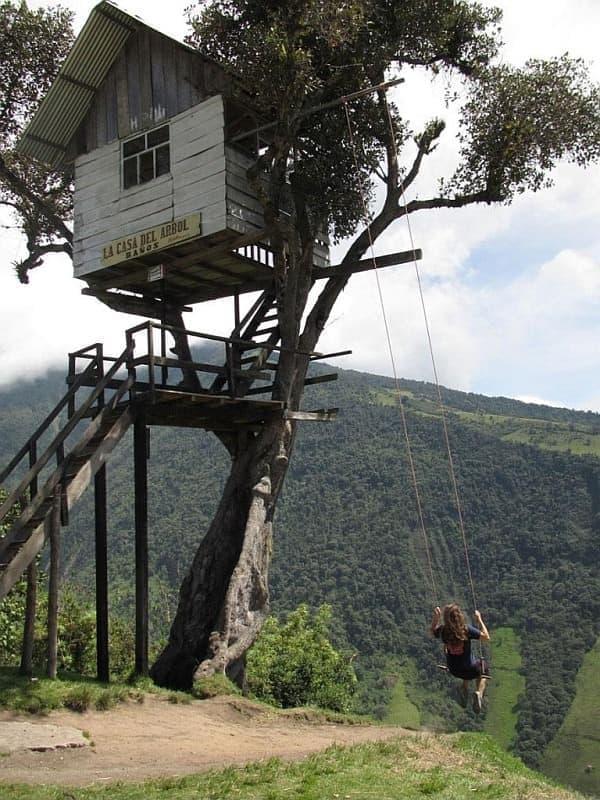 「地の果てにあるブランコ」は、崖の縁に立つ木に設置されている