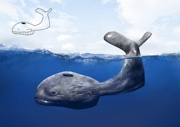 おたまじゃくし(?)のようなクジラ