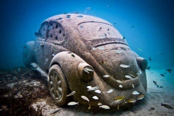 ビートルの安定した形状は、人工漁礁にぴったり