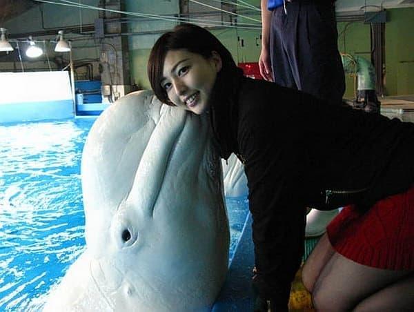 白イルカとキスできるんですよ!