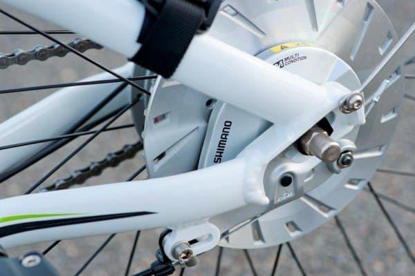 後輪にはシマノのローラーブレーキが搭載されている  目新しいものではないが、安心できる装備だ