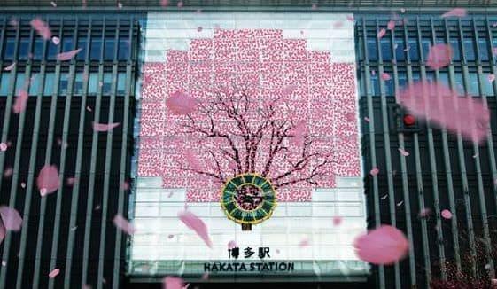 「桜の木」のイメージ(博多駅 壁面)